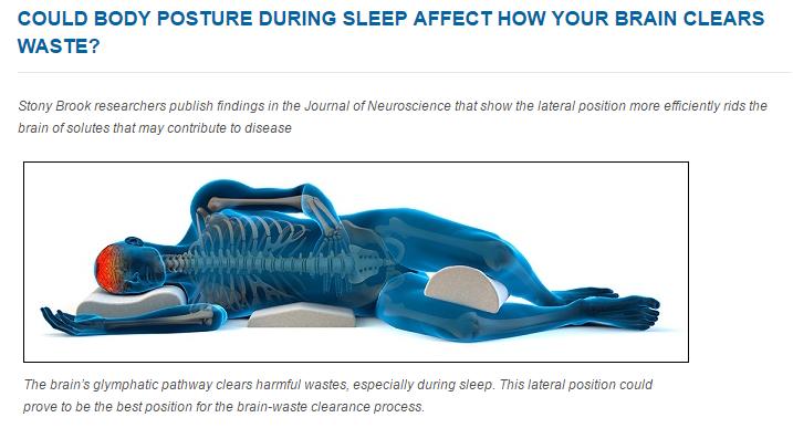 横向きで寝ることでアルツハイマーの原因になる物質を除去できる